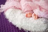 Zavřít obrázek nově narozené děti nohou na růžový pléd