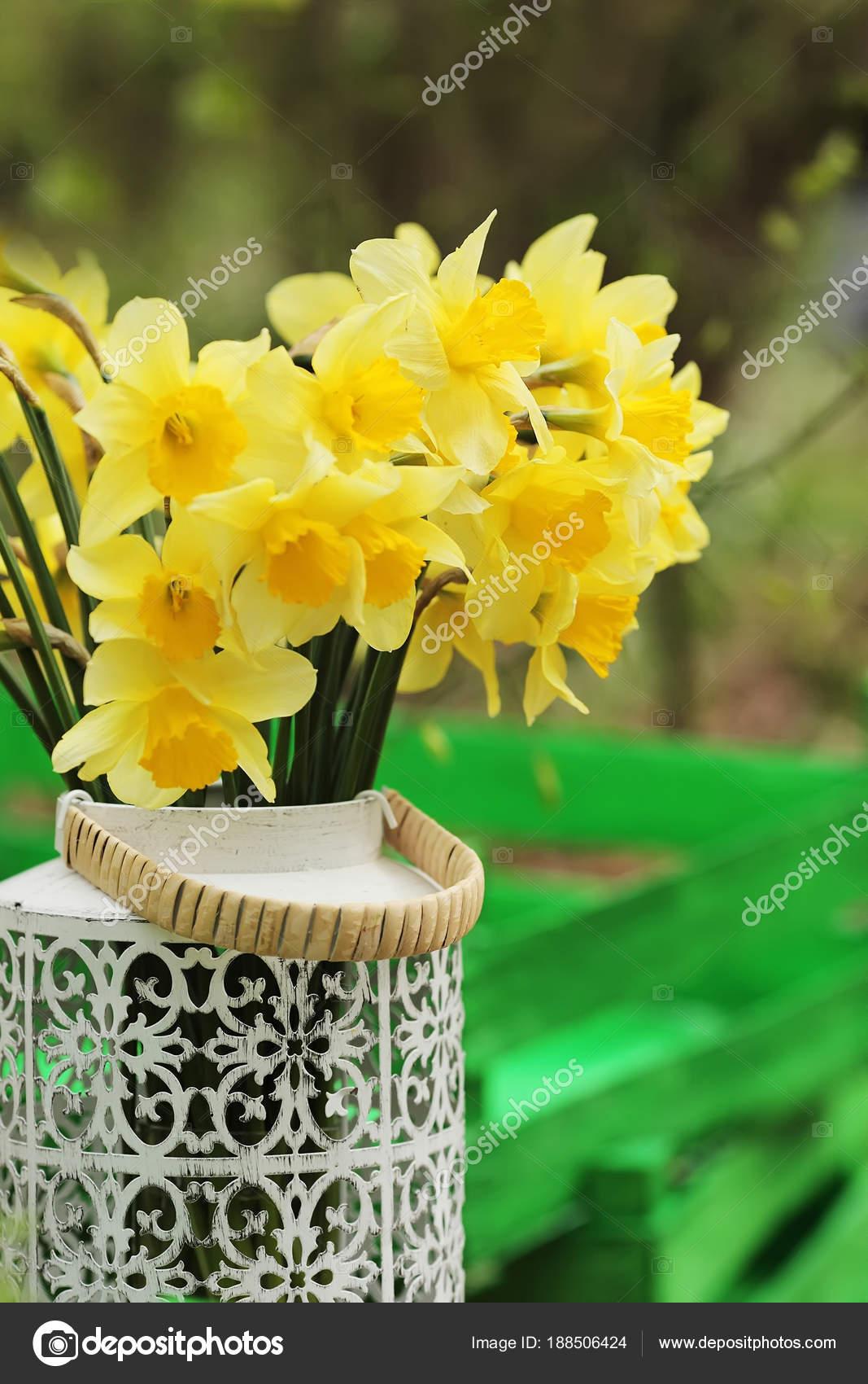 Wiosenne Kwiaty W Doniczkach W Ogrodzie Dekoracje Wielkanocne Z Spr