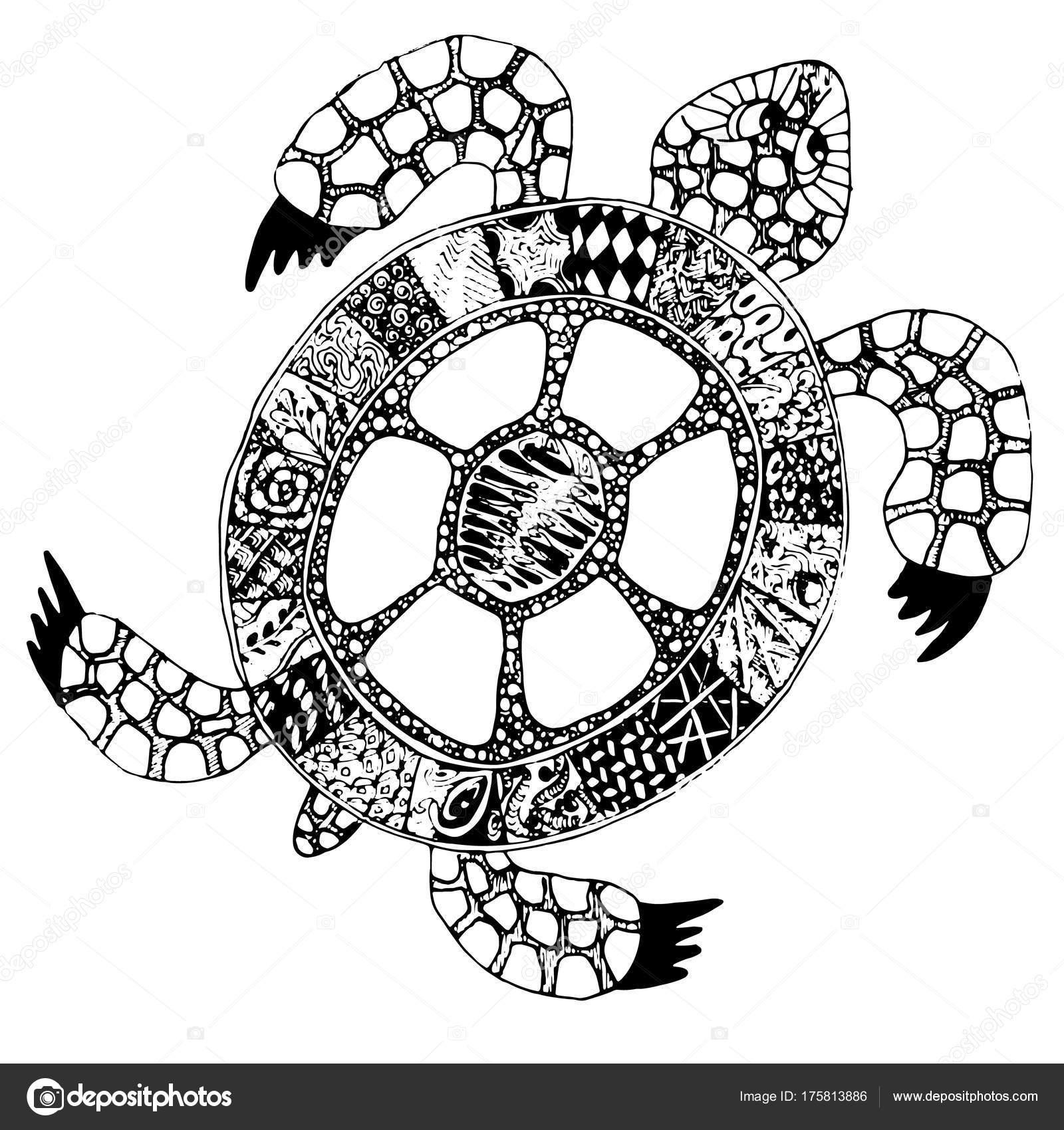 Silueta De Tortuga Para Imprimir Tortuga De Doodle Dibujado Mano