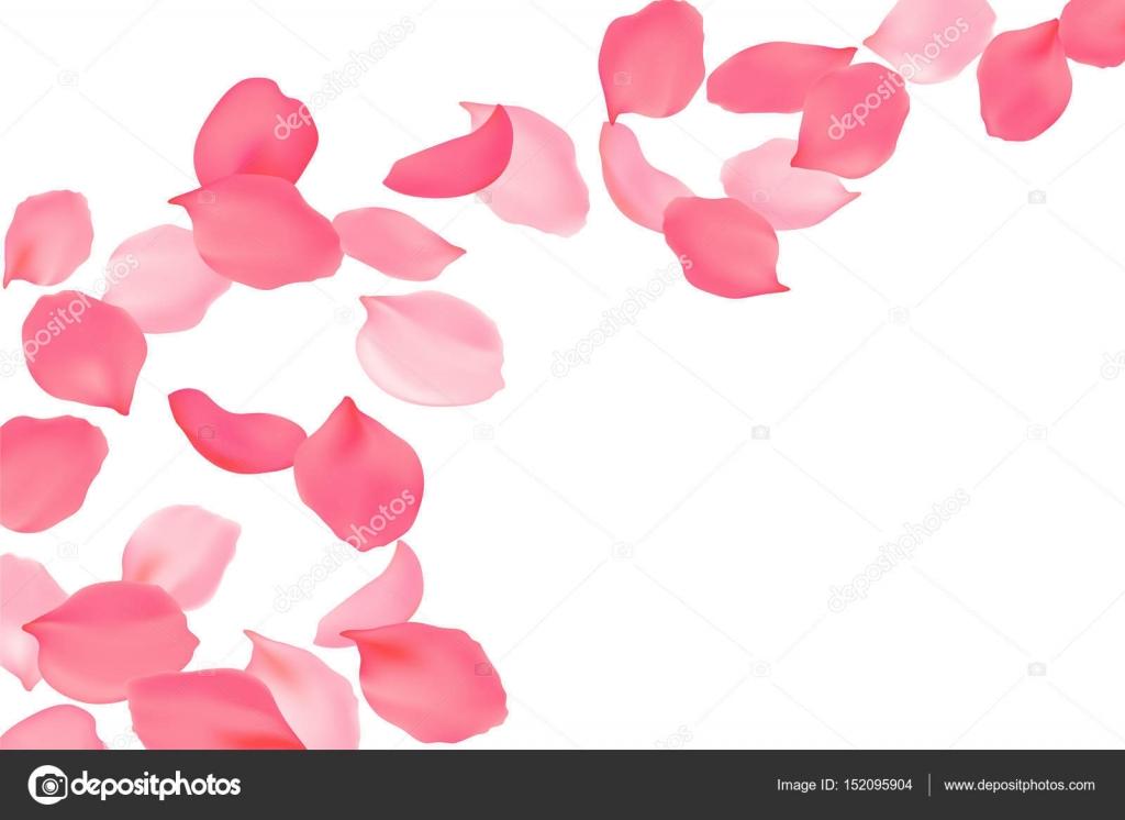 明るいピンクの花をバラの花びらに落ちる桜空飛ぶ花3 D のリアルな