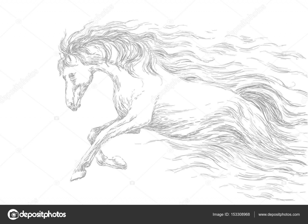Images Running Horse Sketches Running Horse Line Drawing Gray Pencil Sketch Vector Illustration Stock Vector C Goodluckwithus 153308968