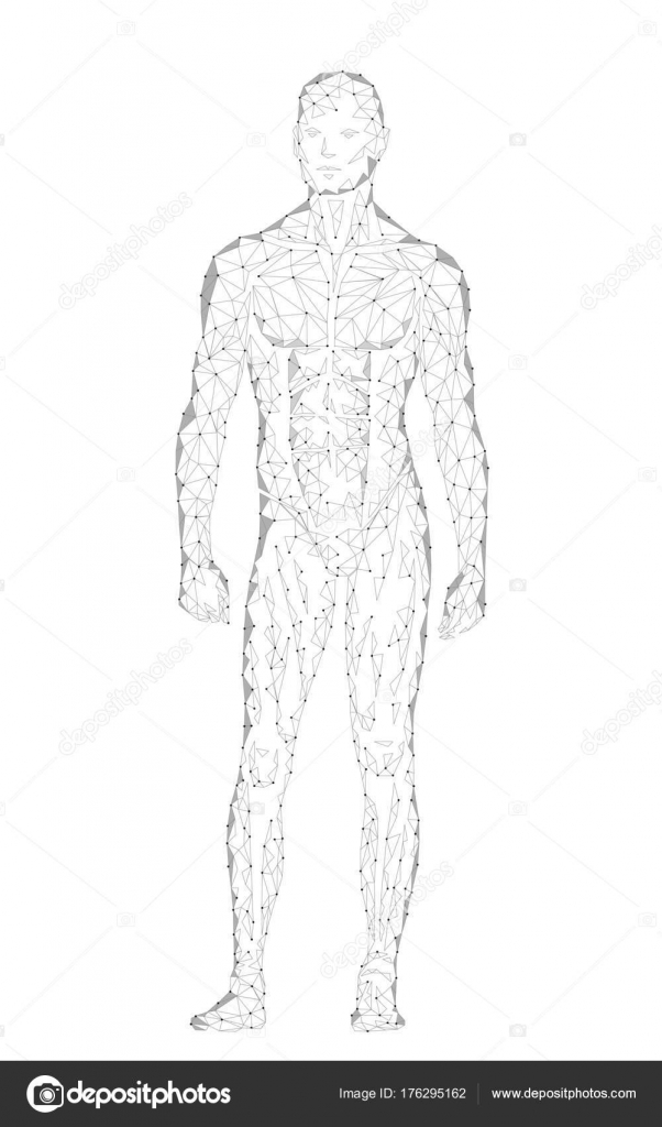 3cd249a21b72b Android robot humanoid optimal perfect man fitness sport shape. Polygonal  geometric point line particle white gray vector illustration art — Vector  by ...