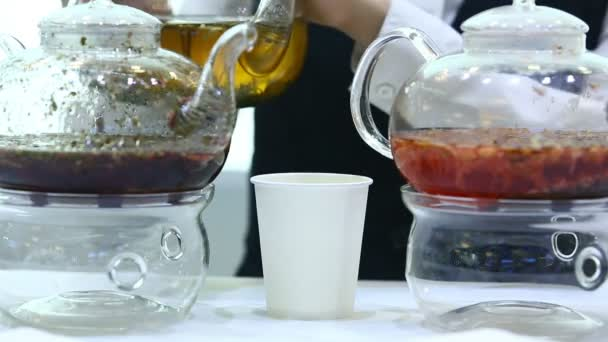 Nalít čaj do papírového kelímku z průhledné konvice zblízka