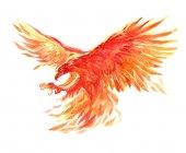 Fényképek Akvarell egyetlen karakter misztikus mitikus karakter phoenix elszigetelt