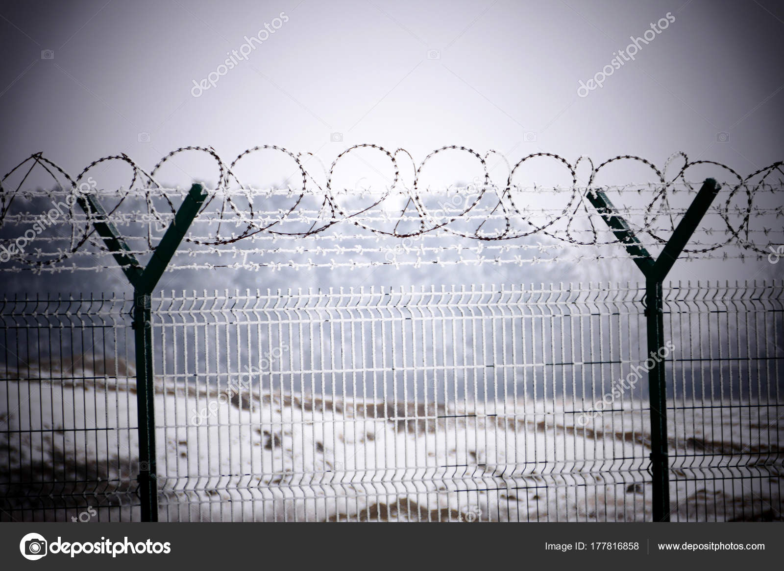 Barb wire fence at the cold winter day — Stock Photo © ognjen1234 ...