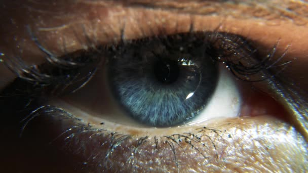 5K Close-Up. Macro Female Human Blue Eye. Pupil Cornea Iris Eyeball Eyelashes