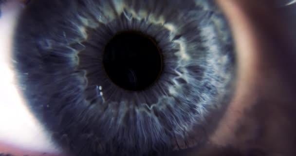 Female Blue Eye. Eyeball Iris Retina Pupil Cornea. Extreme Close-up Macro shot. Blink Open Closed
