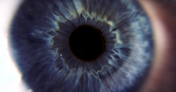 Female Blue Eye. Eyeball Iris Retina Pupil Cornea. Extreme Close-up Macro shot. Blink Open Closed