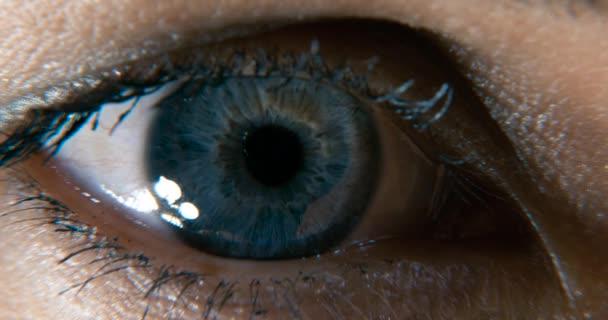 Female Blue Eye. Eyeball Iris Retina Pupil Cornea. Blink Open Close. Close-up shot