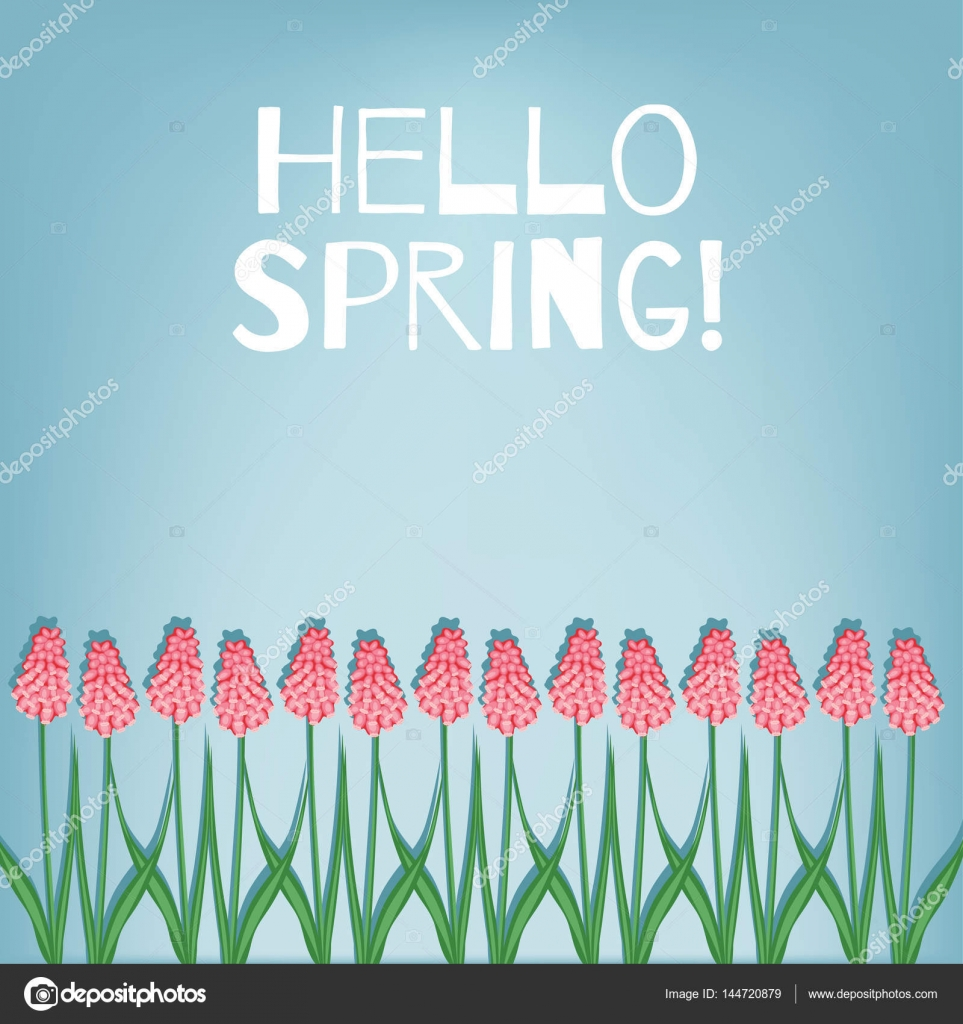 Hello Spring. Spring Card With Flowers Muscari. U2014 Stock Vector