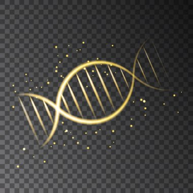 Golden  glowing  DNA sequence isolated on transparent background