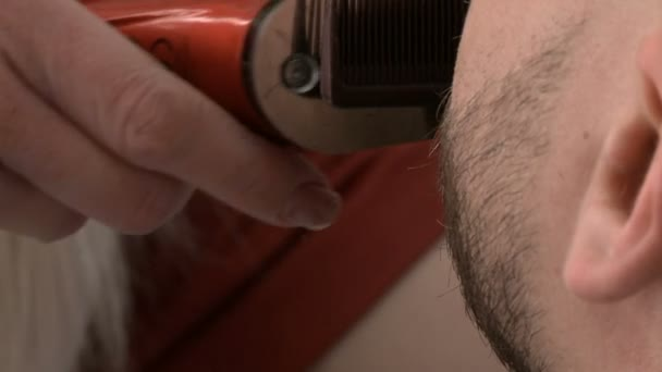 Barber shop, the Barber trims the beard of a bearded man
