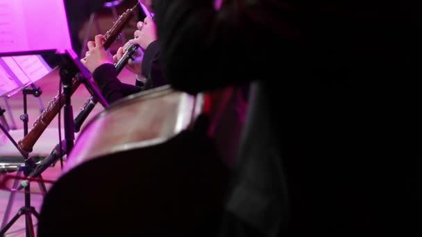 Szimfonikus zenekar, a szerződés teljesítése során. Hegedűsök, és a csellista játszik a koncerten, hátsó nézet