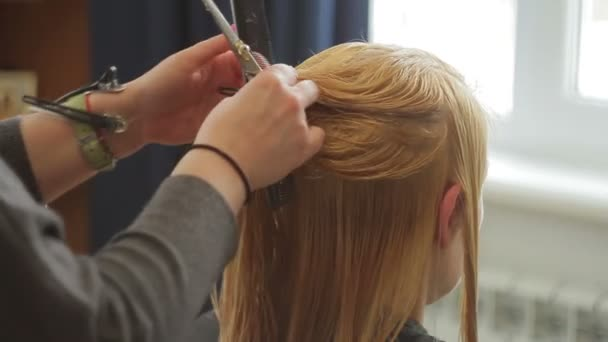The hairdresser shears a woman with long blond hair. Haircut closeup