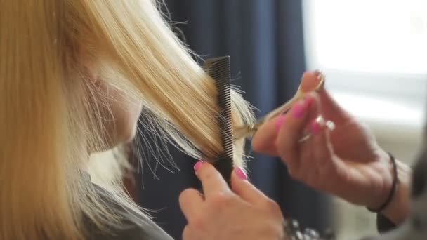 The hairdresser shears a woman with long blond hair. Haircut closeup