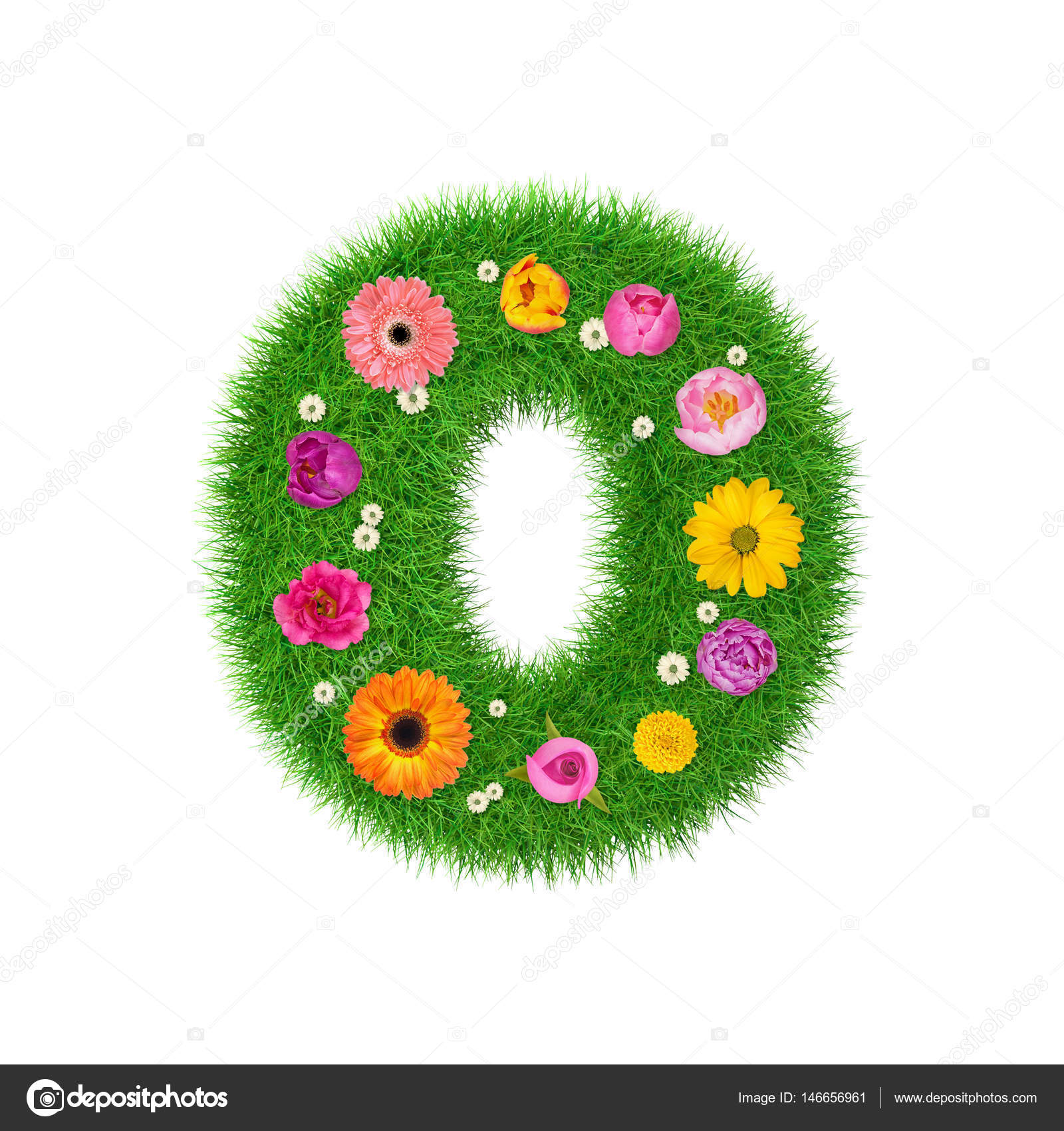 letter o made of grass and colorful flowers spring concept for graphic design collage