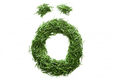 alphabet made of green grass. Isolated on white background