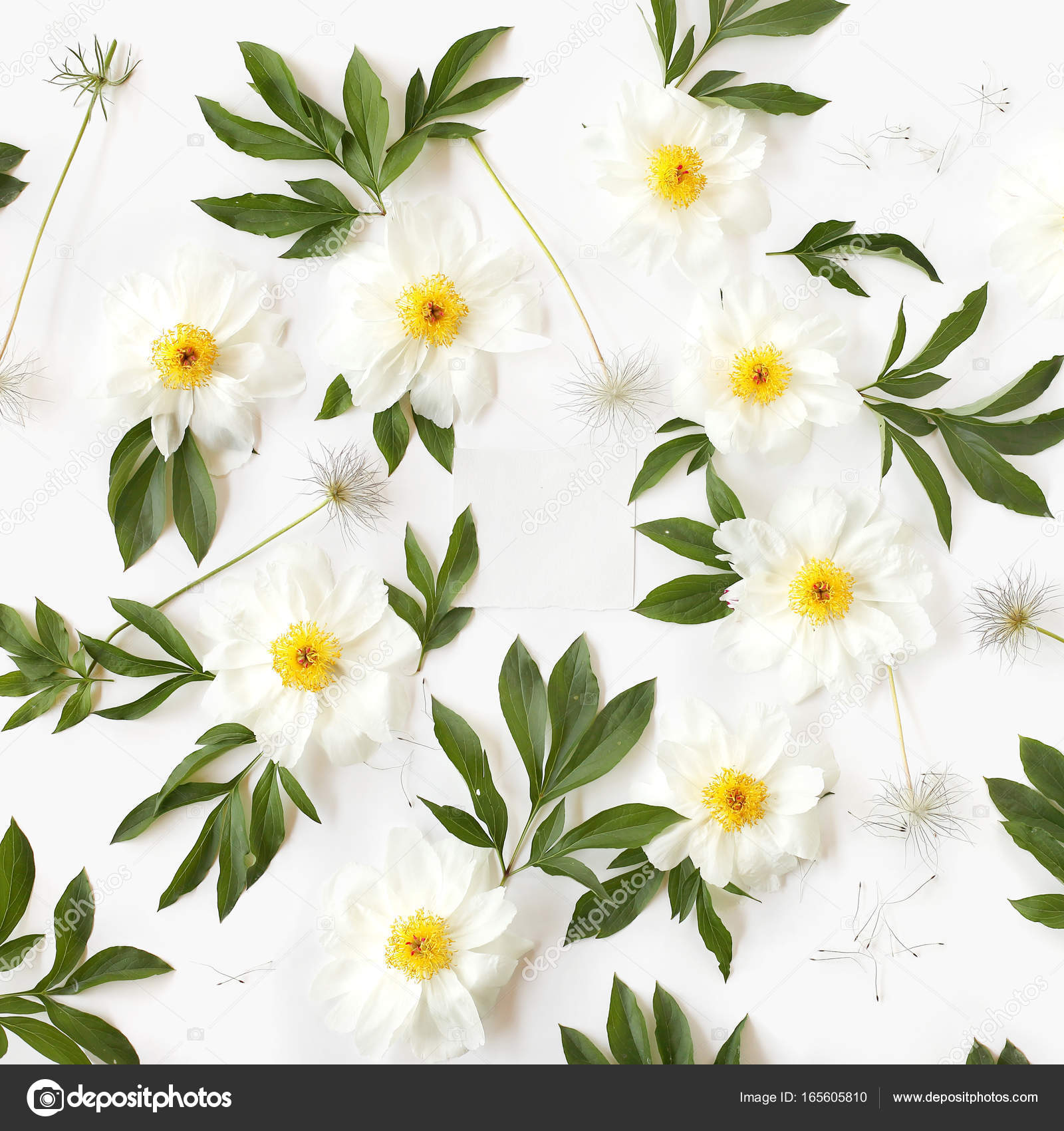 Empty Paper In The Middle Of Floral Pattern Made Of White Peony