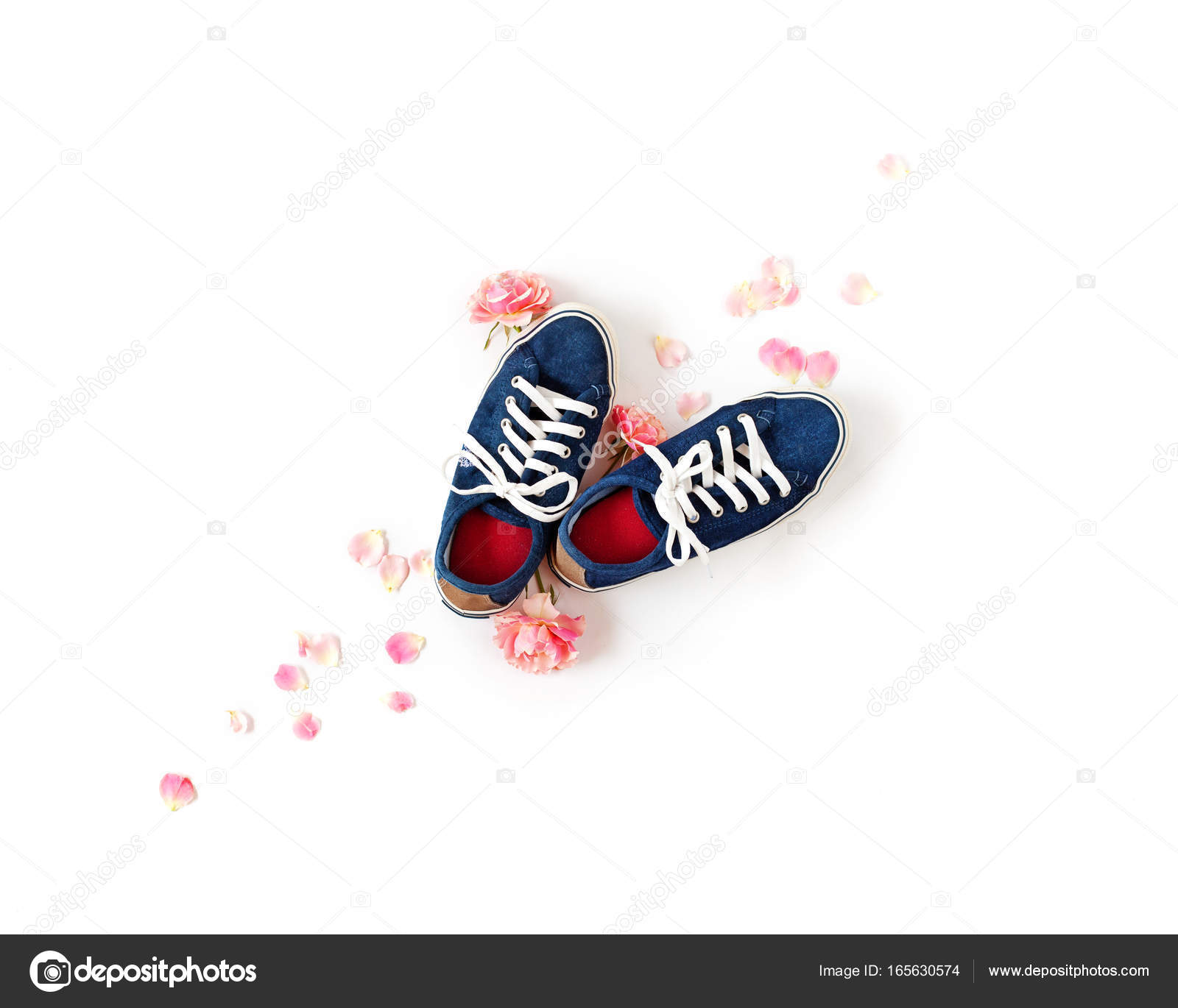 Denim Gumshoes With White Laces Isolated Pink Rose Petals Stock