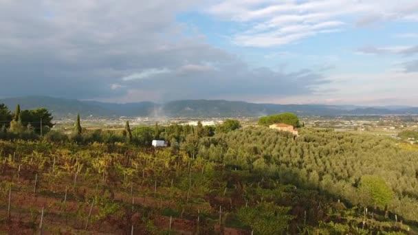 Luftaufnahme, traumhafte Überführung über die italienischen Weinberge mit sanftem Abendlicht