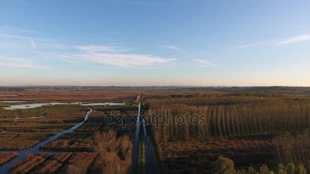 Letecký snímek, létat přes bažinaté krajině s podzimní barvy v Evropě