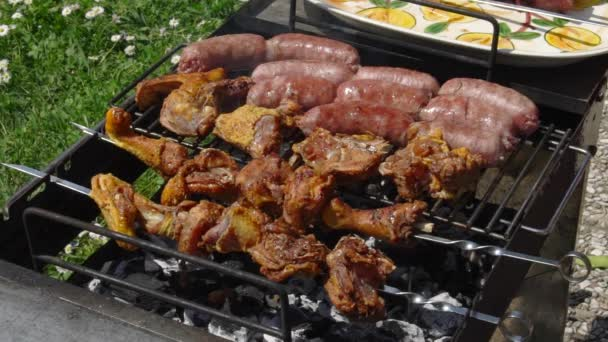 Párky, kuře a hovězí dostává vařené pro letní grilování, zpomalené Hd