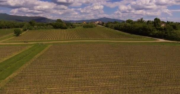 Letecký záběr, dva cyklisté míjející jejich kola krásných vinic v oblasti Toskánsko, Itálie, 4k