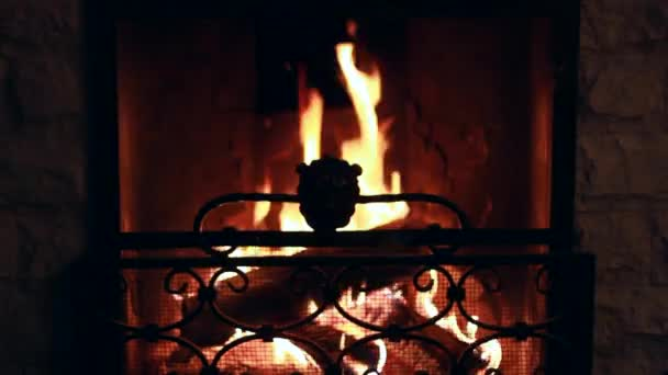 Open Hearth Fireplace With Iron Grate Stock Video C Mdsfotograf