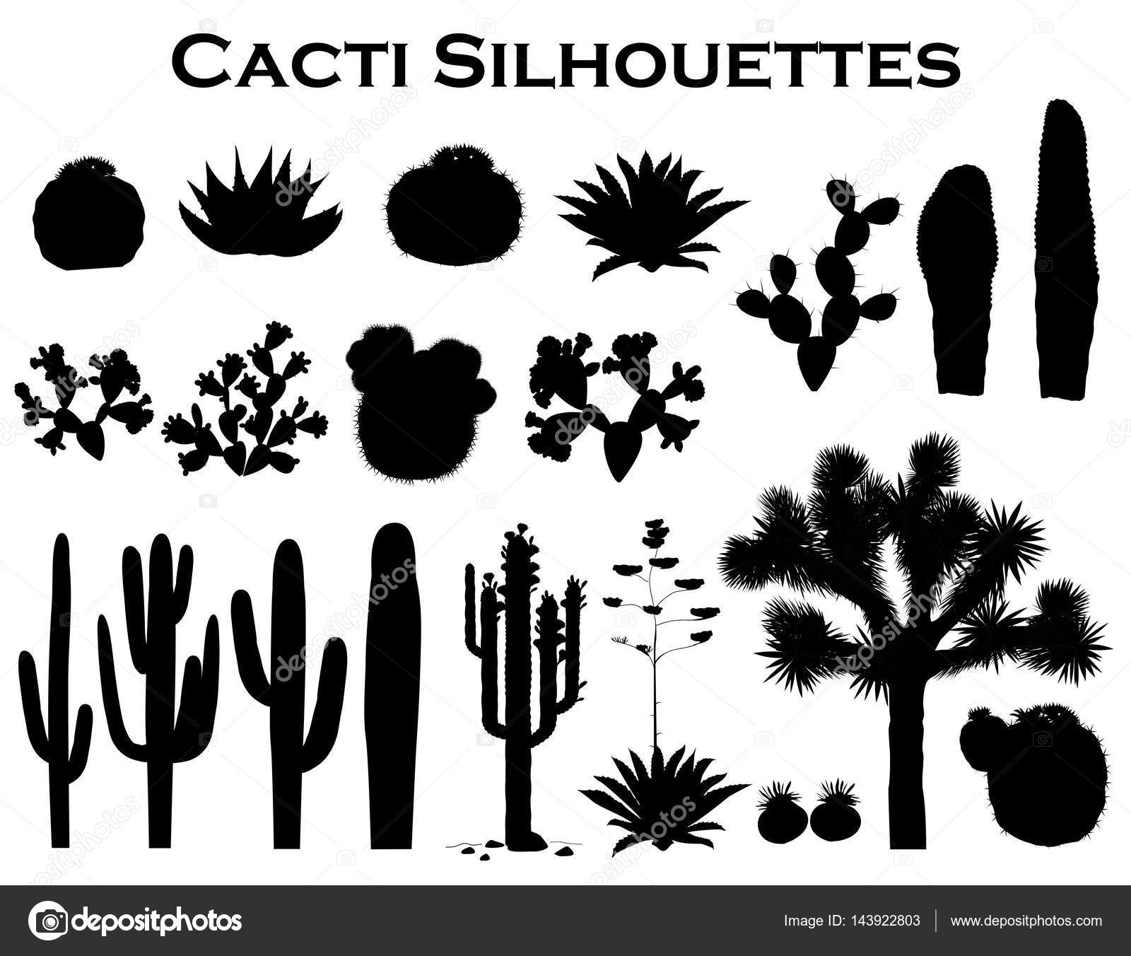 Black silhouettes of cactuses, agave, joshua tree, and ...