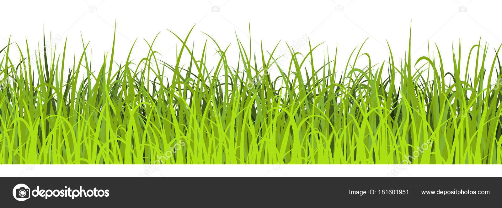 春の緑の草のシームレスなイラスト緑の牧草地の境界線 ストック