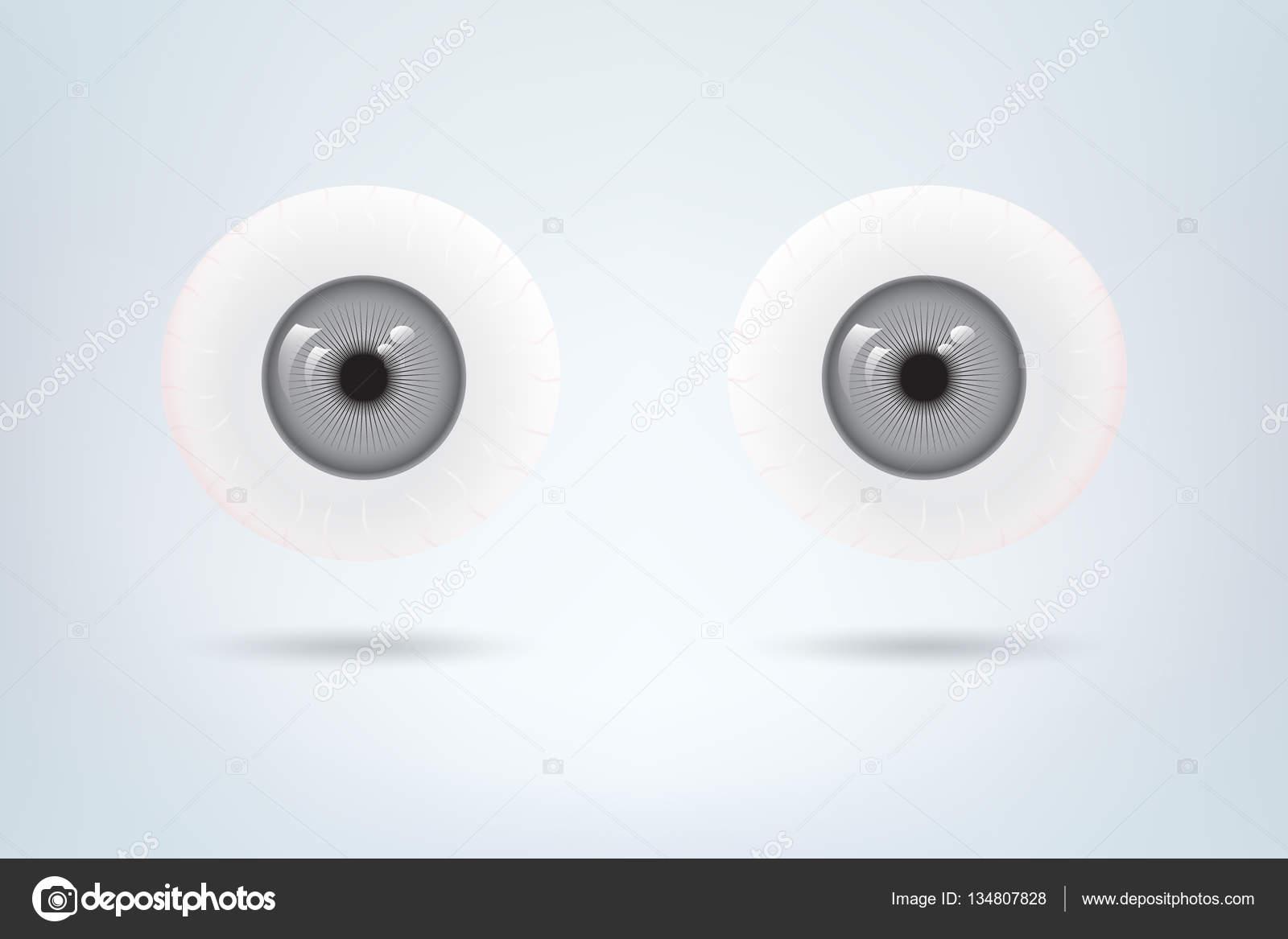 Menschlichen grauen Augen Kugeln Schüler. Medizinisches Bildmaterial ...