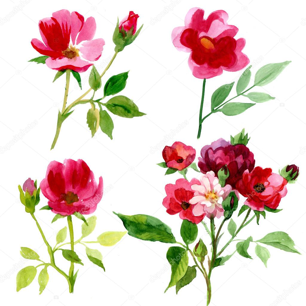4 Types Of Roses In Watercolor Stock Photo Mystocks 129812450