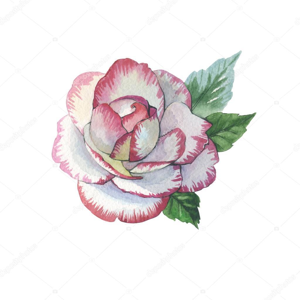 Tendenza акварельные тату цветы