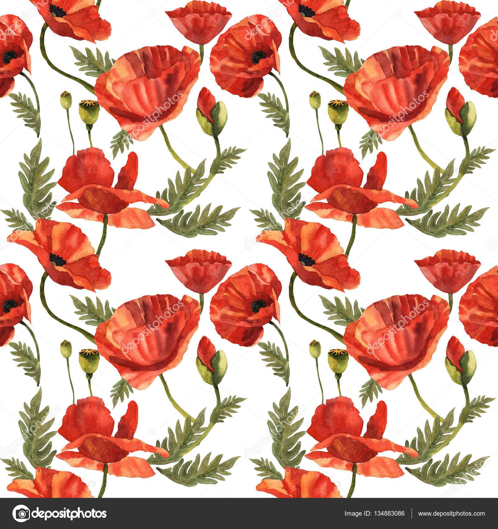 Wildflower poppy flower pattern in a watercolor style isolated wildflower poppy flower pattern in a watercolor style isolated stock photo mightylinksfo