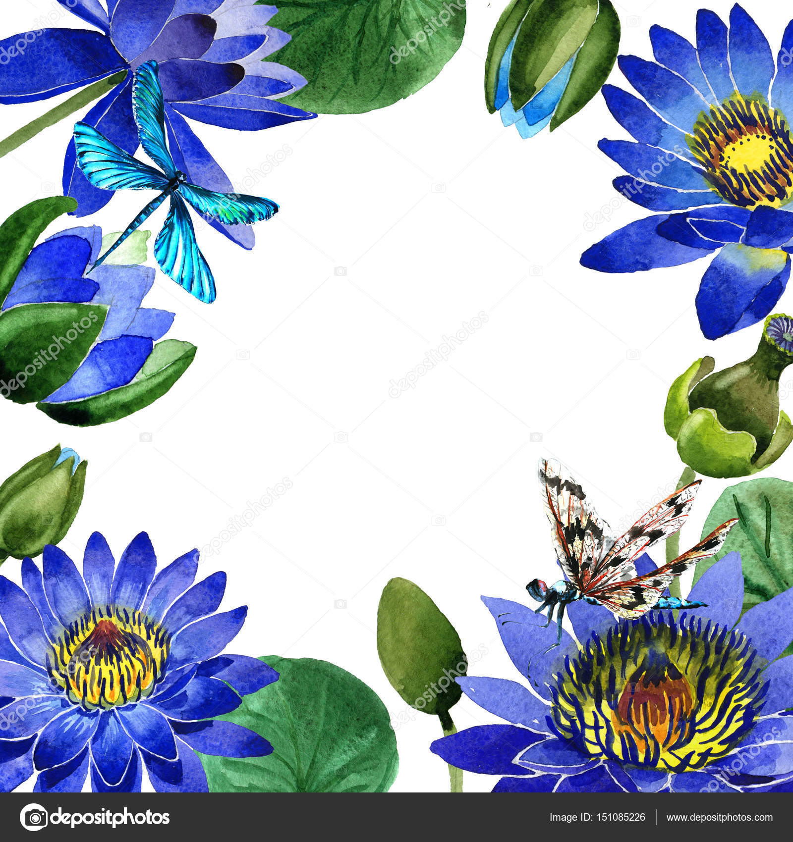 Wildflower Blue Lotus Flower Frame In A Watercolor Style Isolated