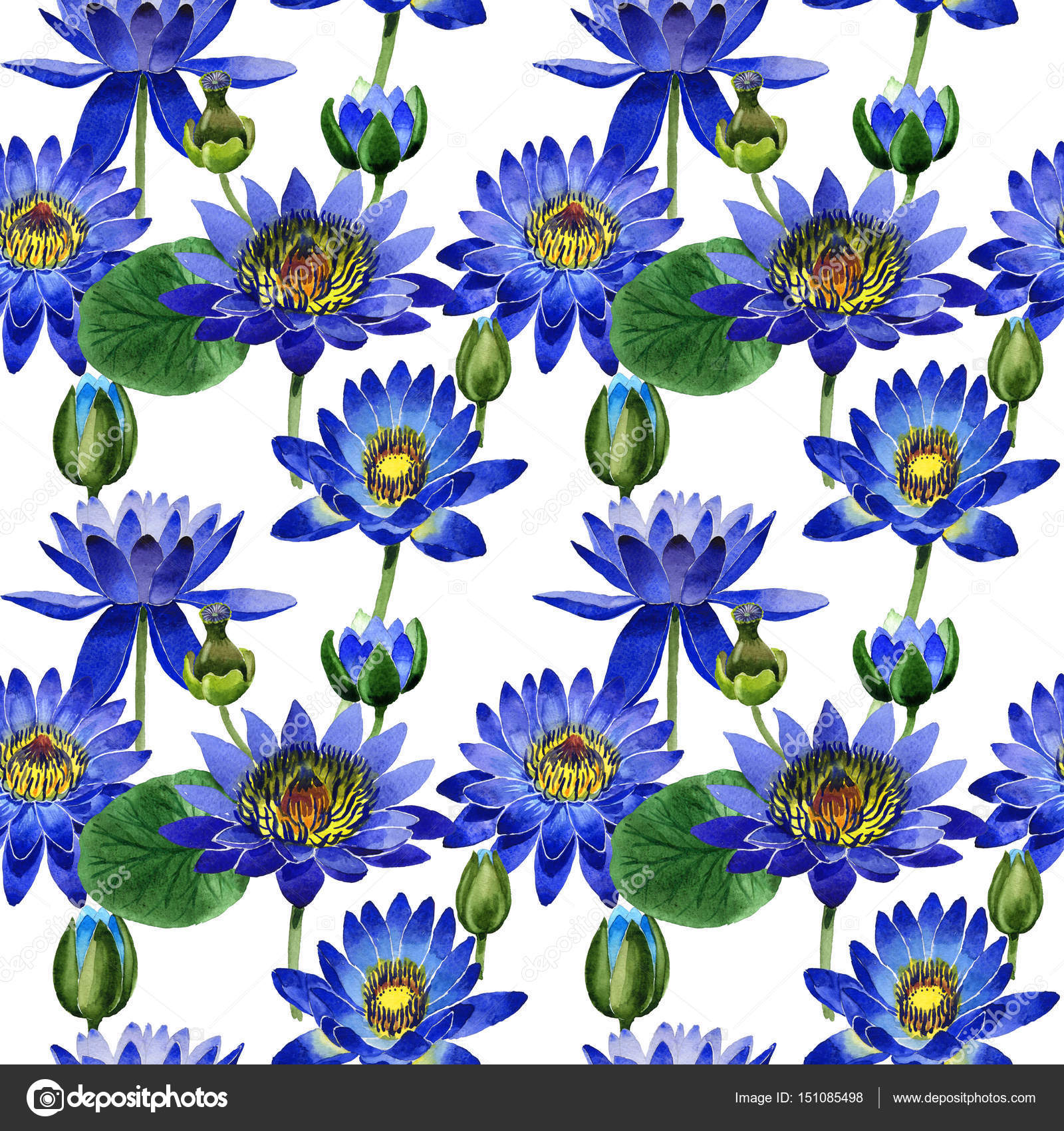 Wildflower Blue Lotus Flower Pattern In A Watercolor Style Isolated