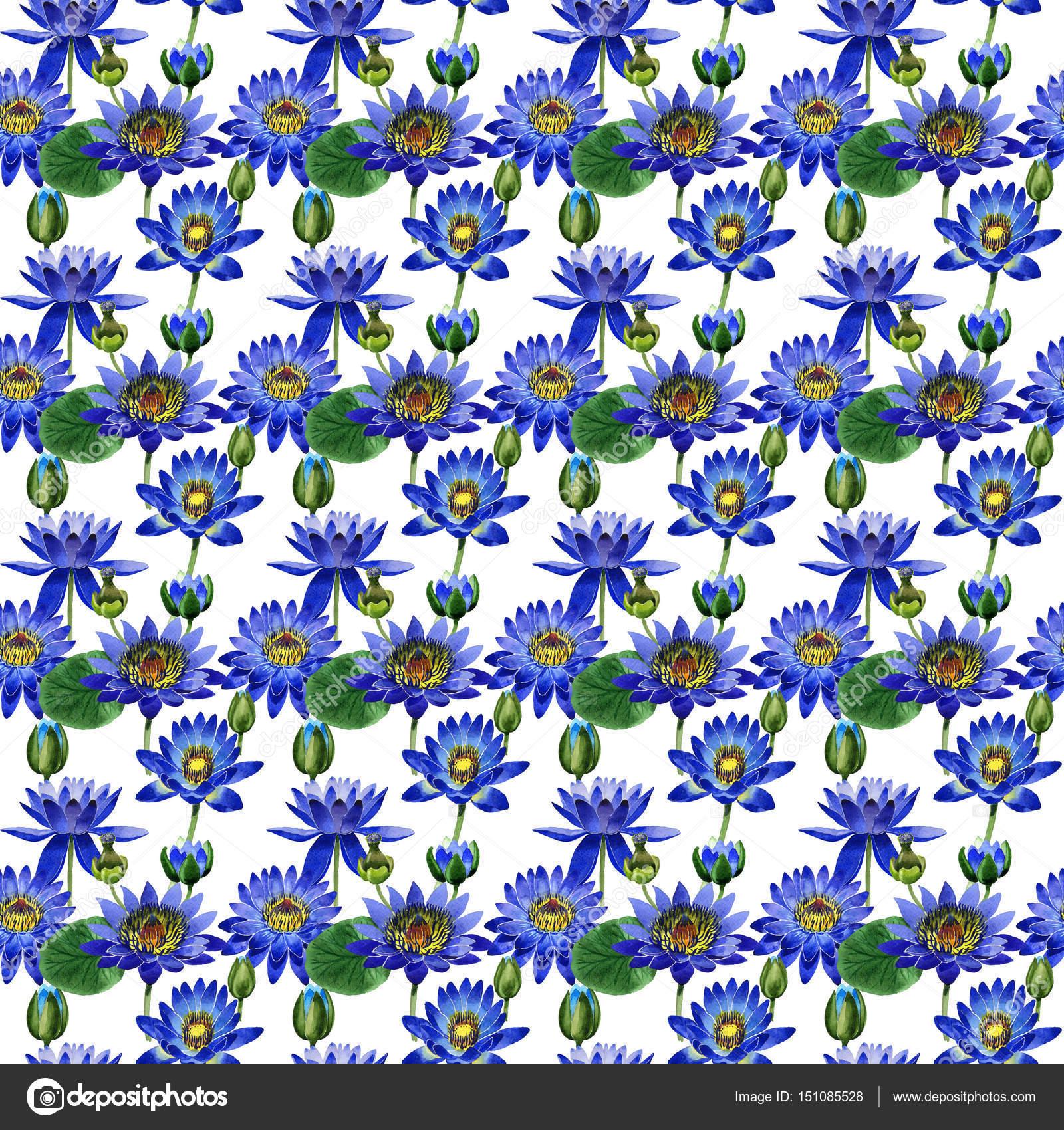 Wildflower blue lotus flower pattern in a watercolor style isolated wildflower blue lotus flower pattern in a watercolor style isolated stock photo izmirmasajfo