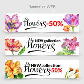 Wildflower hibiscus flower banner in a watercolor style isolated.