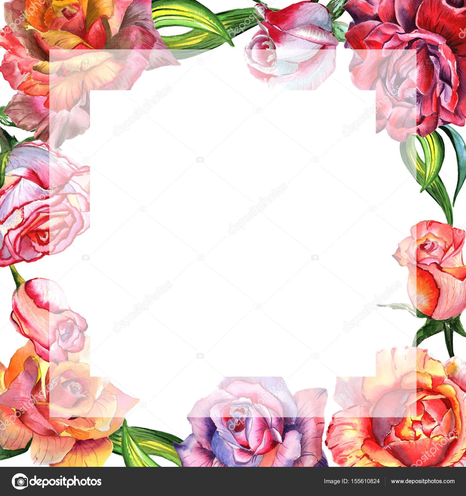 Marco de flor color de rosa de flores silvestres en un estilo ...