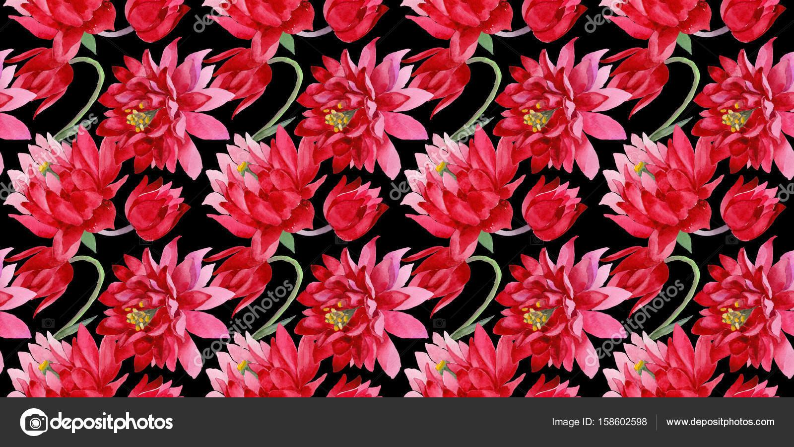 Imagenes Flores Para Pantalla Hd Flor De Aquilegia De Flores