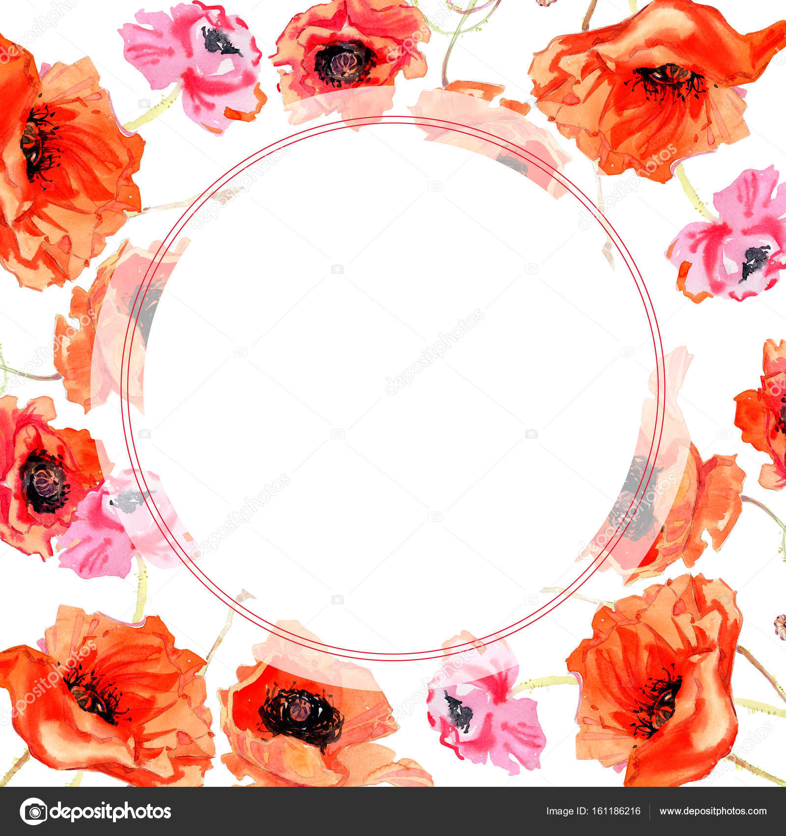 Wildflower Poppy Flower Frame In A Watercolor Style Stock Photo