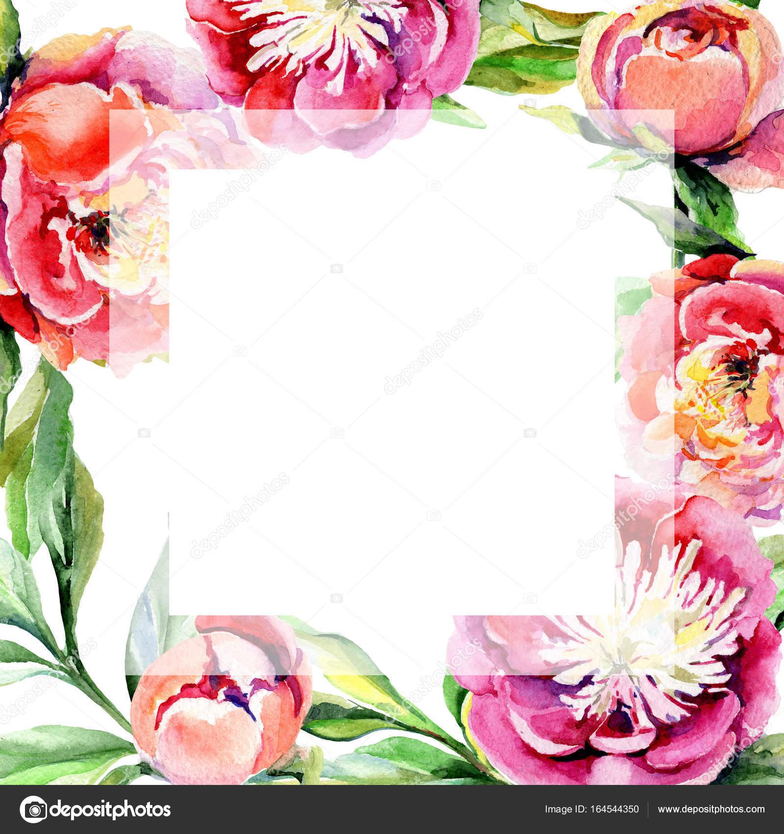 Marco de flor de peonía flores silvestres en un estilo acuarela ...