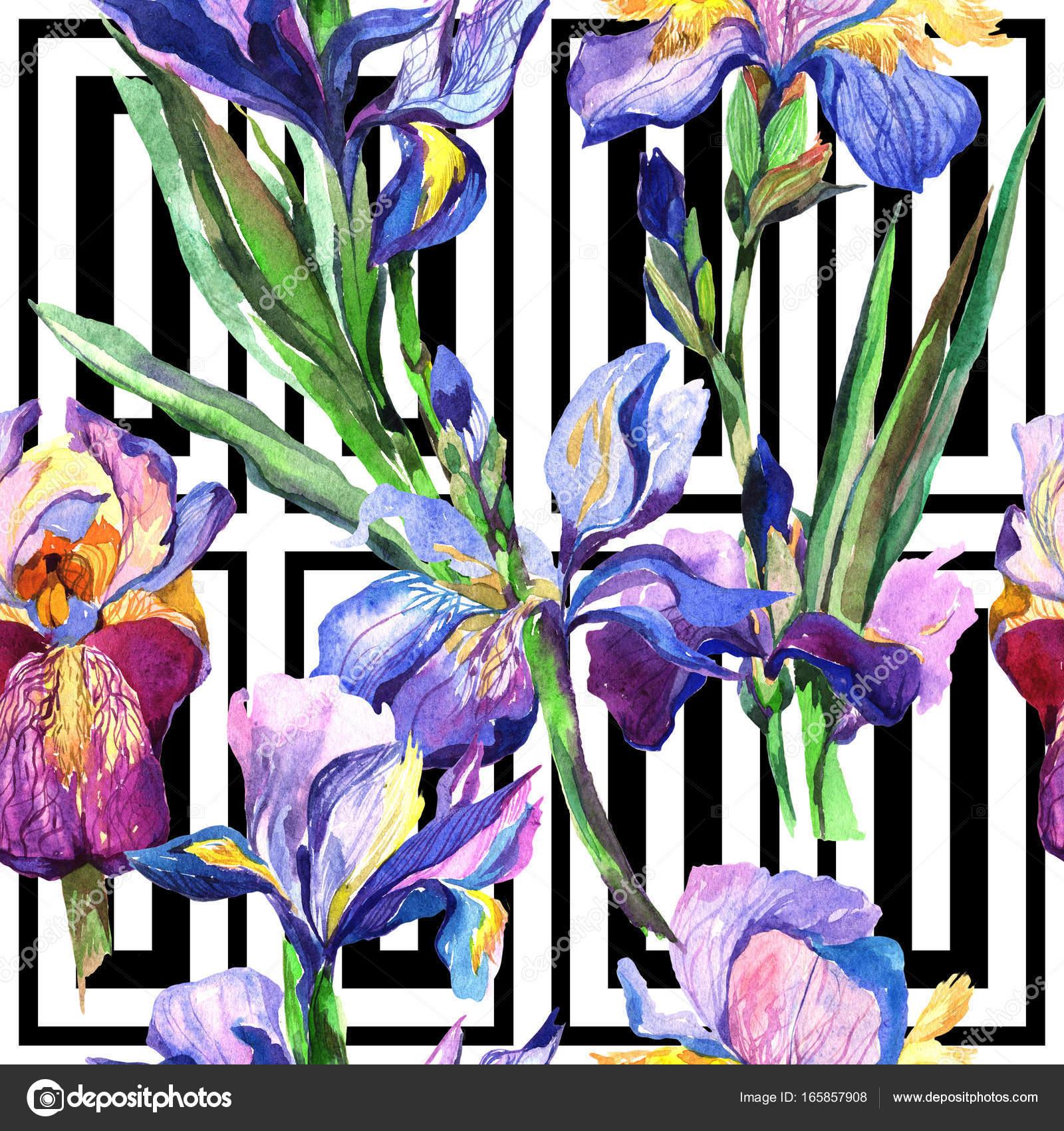 Wildflower iris flower pattern in a watercolor style stock photo wildflower iris flower pattern in a watercolor style stock photo izmirmasajfo