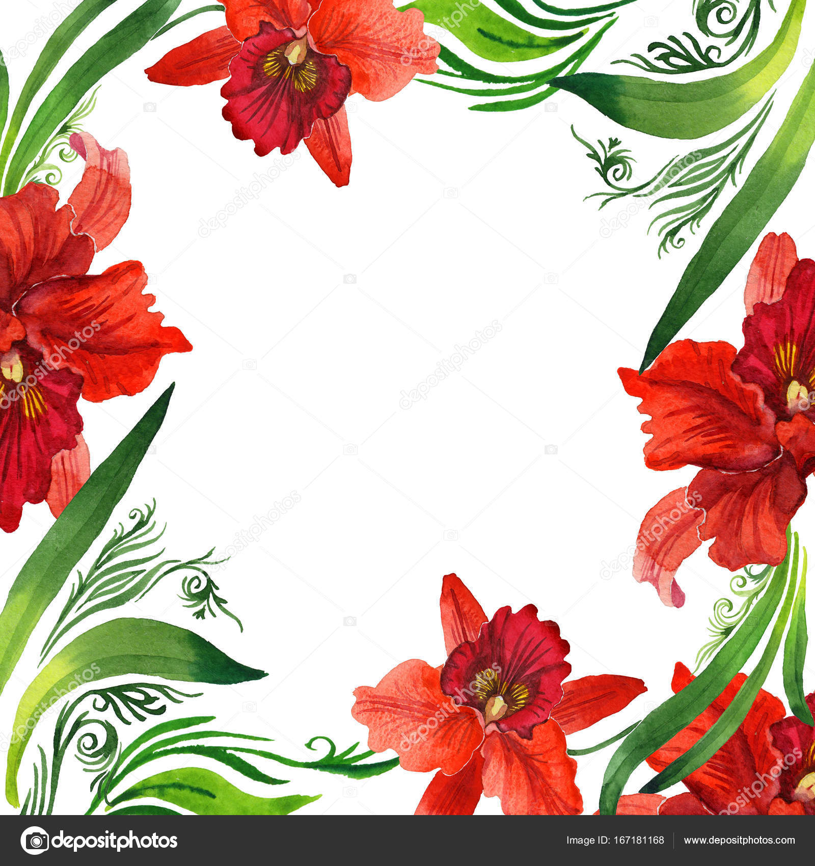 Wildflower orchid flower frame in a watercolor style. — Stock Photo ...