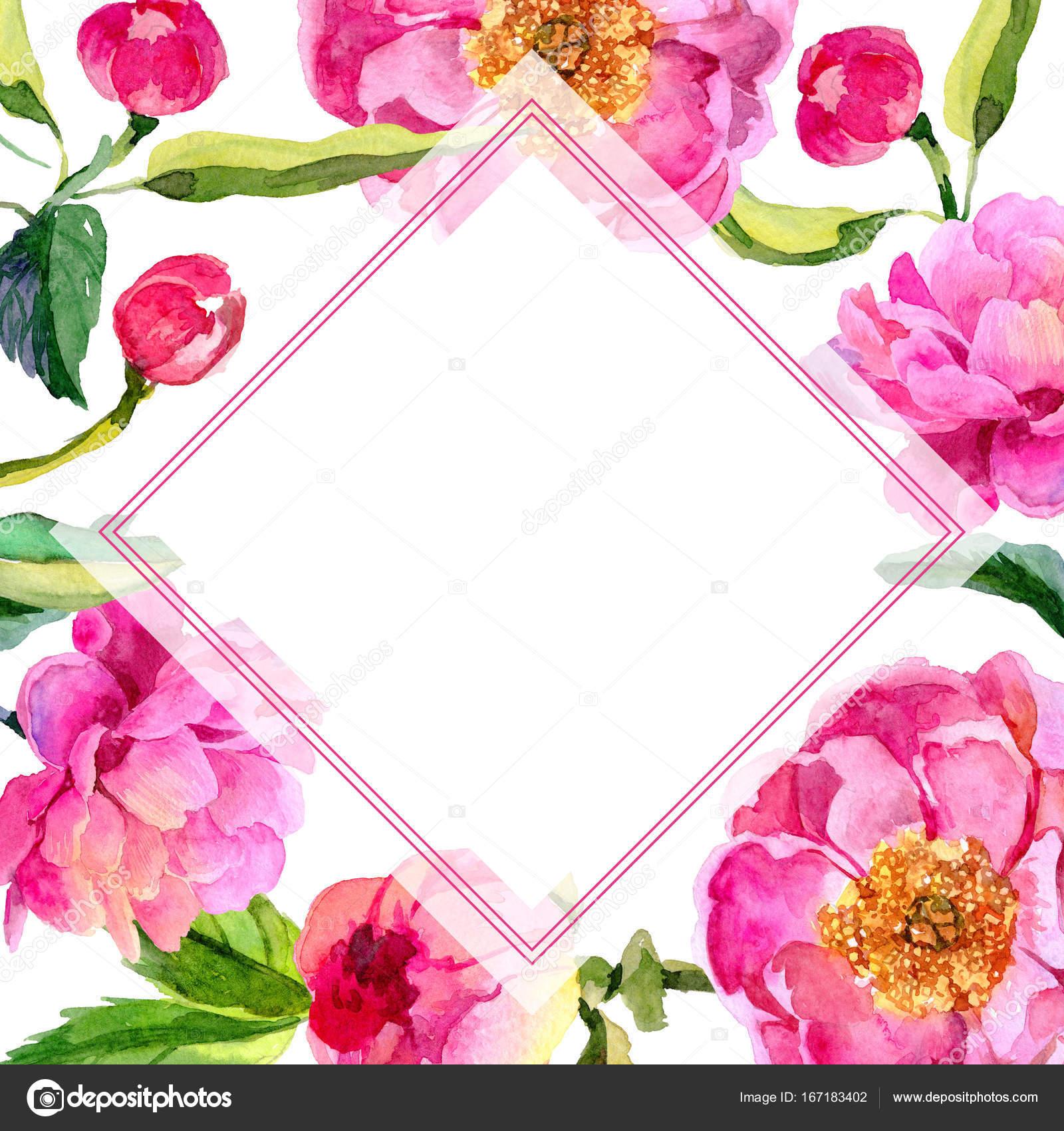 Flores silvestres peonías flor marco un estilo acuarela — Foto de ...