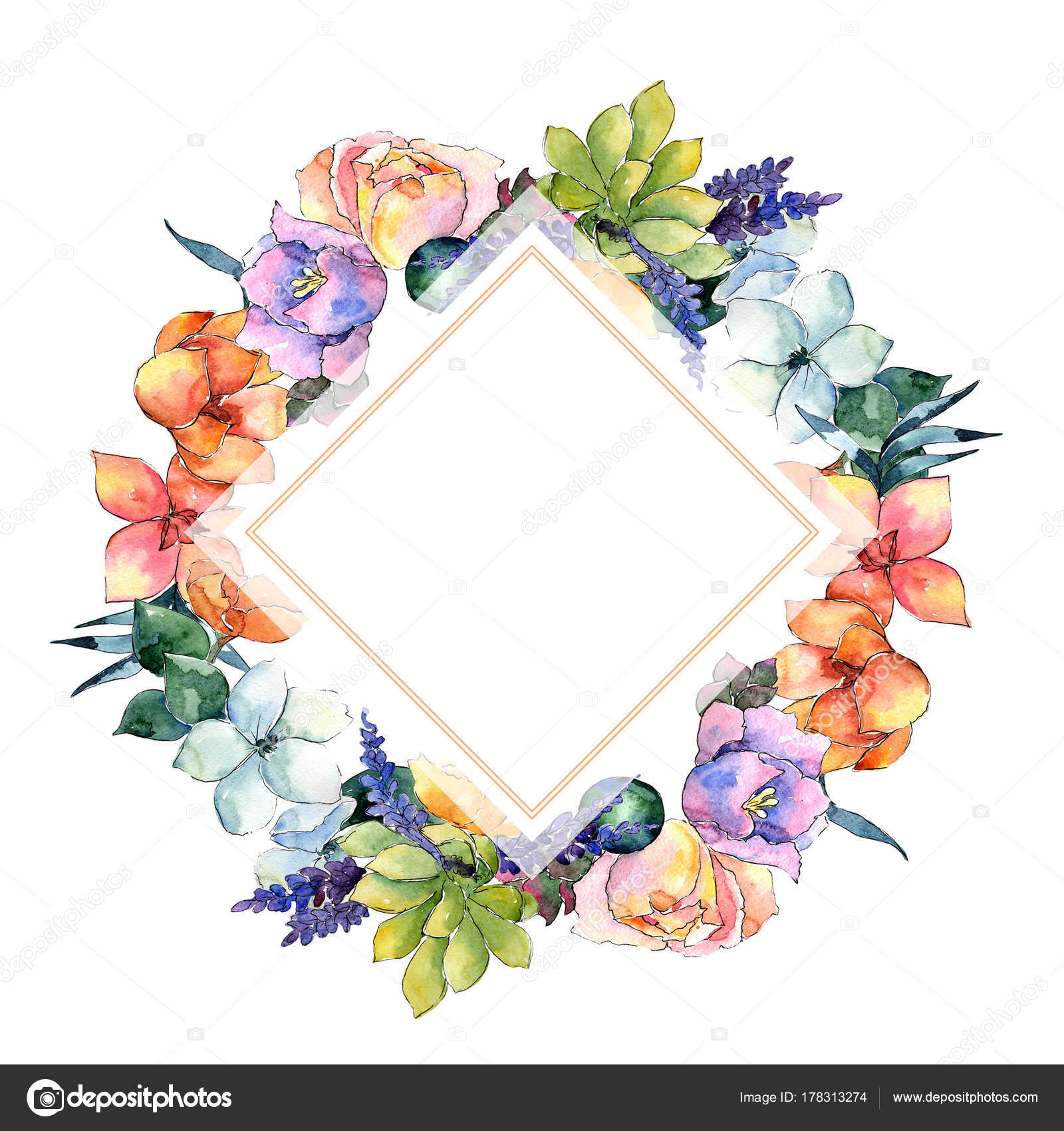 Fotos Y Nombres De Flores Ornamentales Fotograma De La