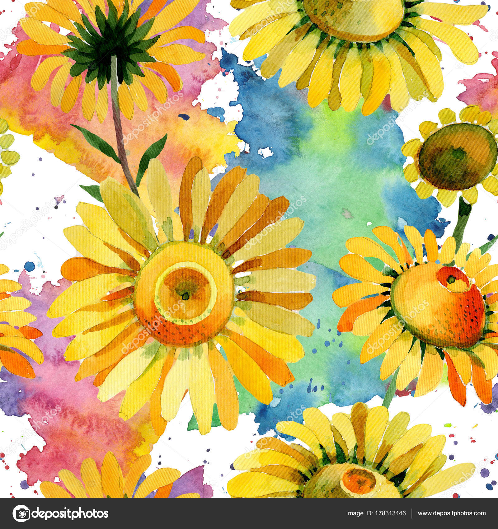 Fotos Y Nombres De Flores Amarillas Patron De Flor De Manzanilla