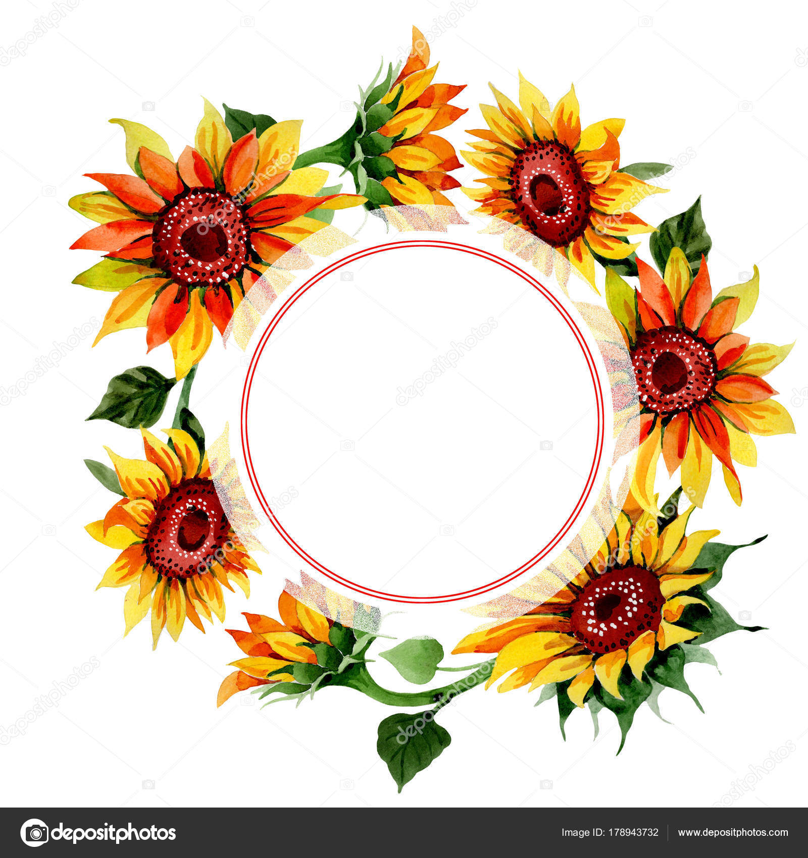 Wildflower sunflower flower frame in a watercolor style. — Stock ...