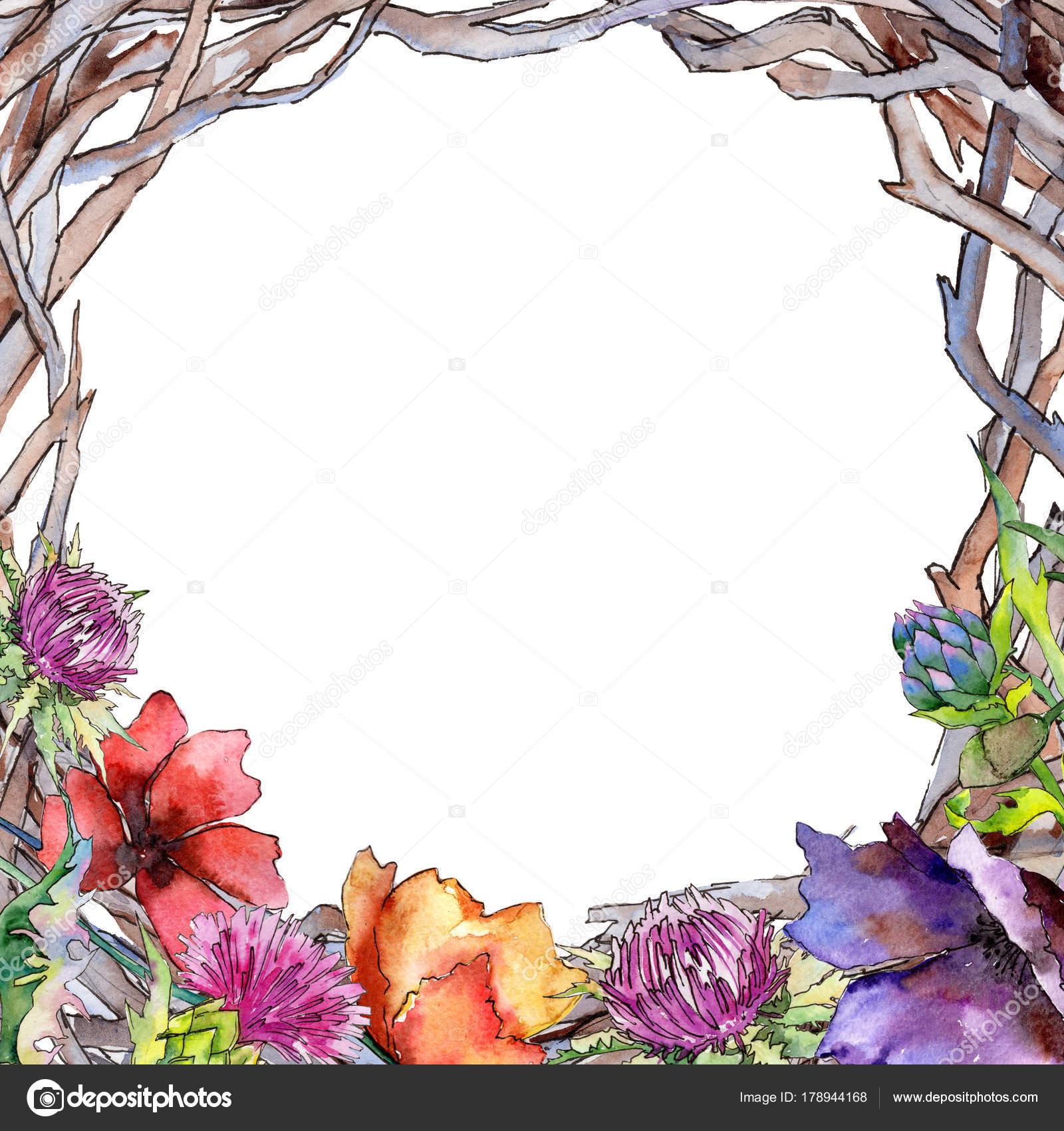 Wildflower Distel Blumenrahmen im Aquarell-Stil — Stockfoto ...