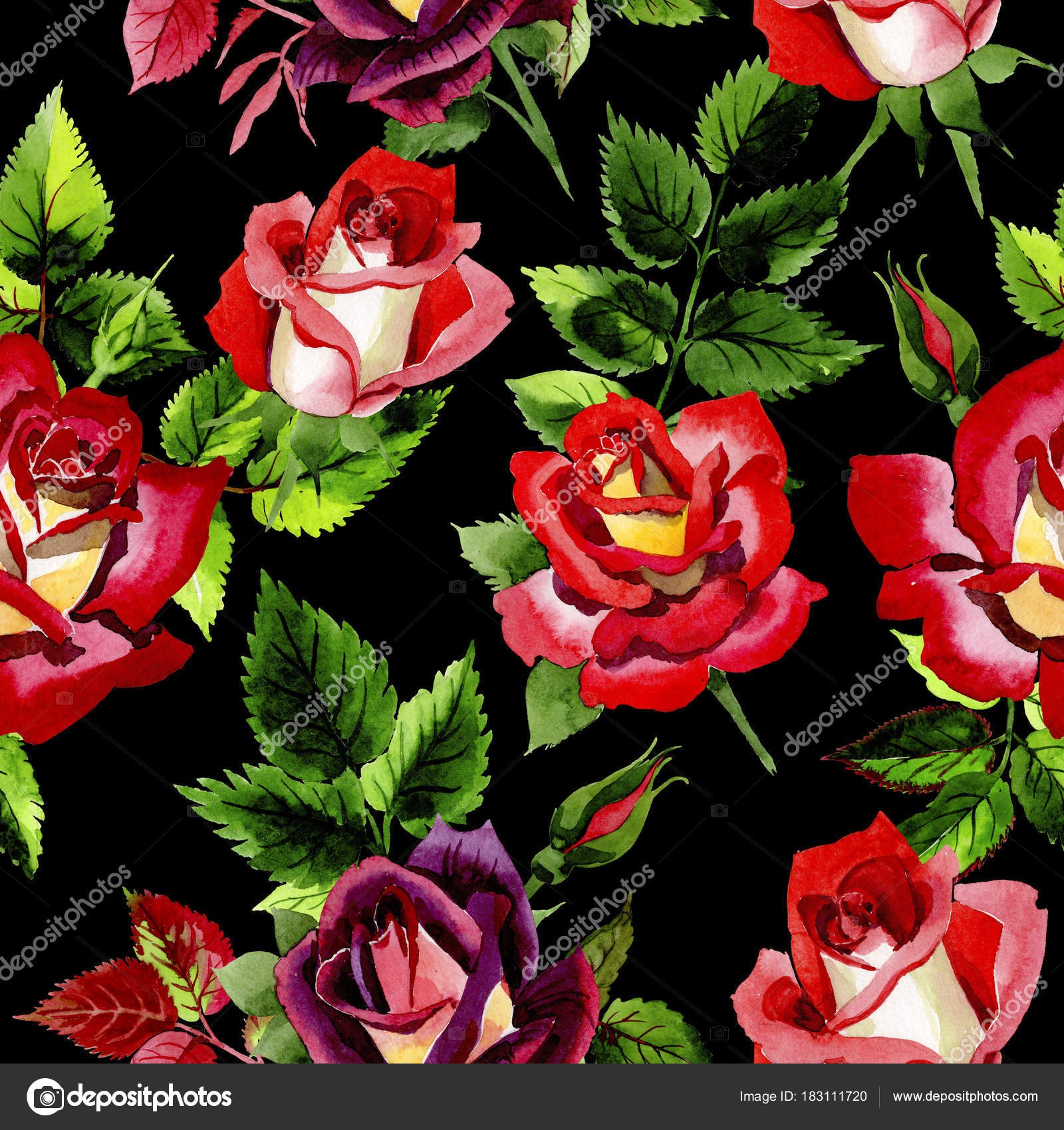 Wildflower two-color dark red rose flower pattern in a watercolor ...
